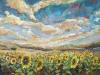 Field of Sunshine II