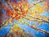 Painted Kaleidoscope